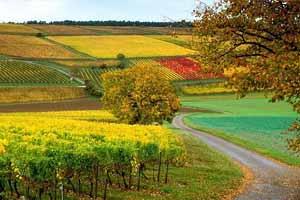 Климат Франции: общая характеристика