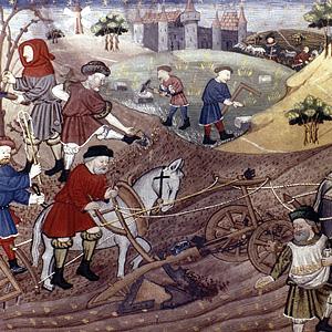 Сельское хозяйство Франции во второй половине XV века