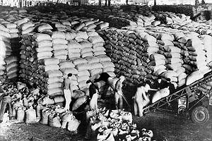 Поставки продовольствия во Францию в рамках плана Маршалла