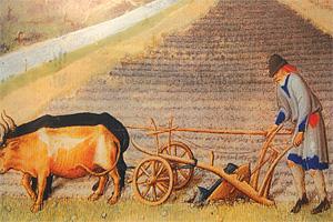 Сельское хозяйство Франции в XI—XIII вв.