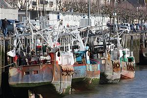 Рыболовные суда во Франции