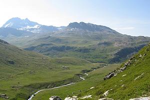 Альпийские луга горных районов Франции