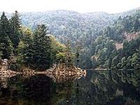 Озеро Альтенвее (Эльзас, Верхний Рейн)