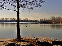 Озеро Багжерсе (Эльзас, Нижний Рейн)