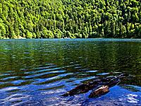 Озеро Балон (Эльзас, Верхний Рейн)