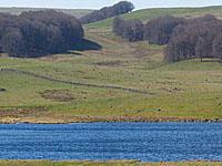 Озеро Борн (Лангедок-Руссильон, Лозер)