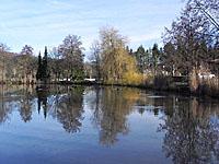 Озеро Фоли (Лотарингия, Вогезы)