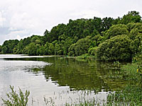 Озеро Гран Резервуар де Вьоро (Земли Луары, Луара Атлантическая)