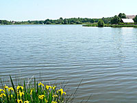 Озеро Риль (Центр - Долина Луары, Эндр-е-Луара)