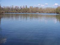 Озеро Соер (Эльзас, Нижний Рейн)