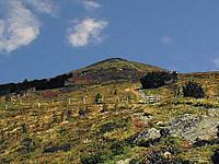 Гора Боренкопф (Вогезы)