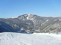 Гора Балён д'Эльзас (Вогезы)