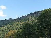 Гора Брезуар (Вогезы)