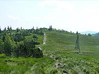 Гора Газон дю Фэнь (Вогезы)