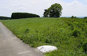 Гора Кнейф (Арденны)