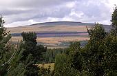 Гора Синьяль дю Люге (Центральный массив)