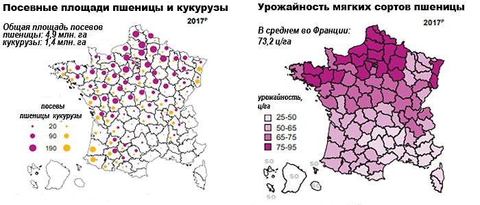 Посевные площади и урожайность пшеницы и кукурузы во Франции (2017 г.)