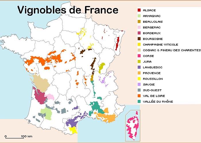 Сельское хозяйство Франции: основные виноградники