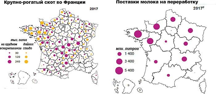 Мясомолочное животноводство во Франции (2017 г.)