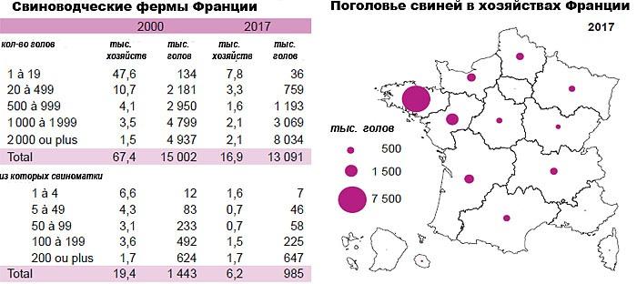 Свиноводческая отрасль во Франции (2017 г.)