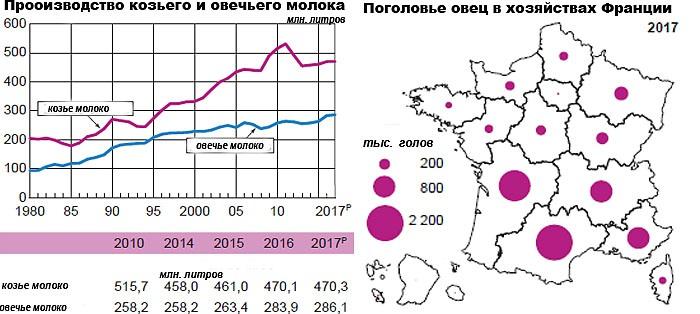 Овцеводство и разведение коз во Франции (2017 г.)