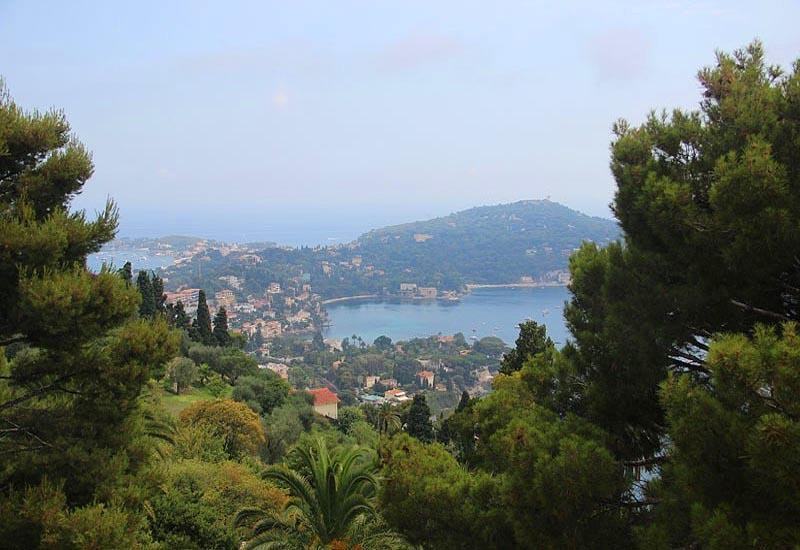 Вечнозеленые атлантико-средиземноморские леса Франции
