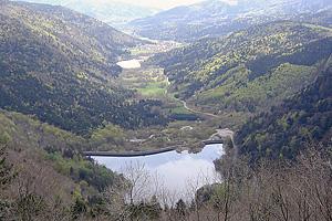 Озеро Альфельд (Эльзас)
