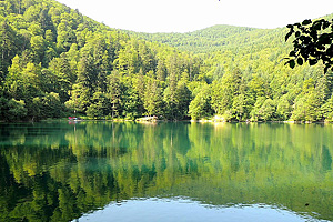 Озеро Балон (Эльзас)