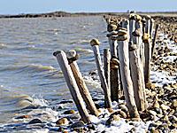 Прибрежный пруд Фангассье (Буш-дю-Рон)