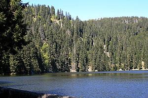 Озеро Вер у де Сульцеран  (Эльзас)
