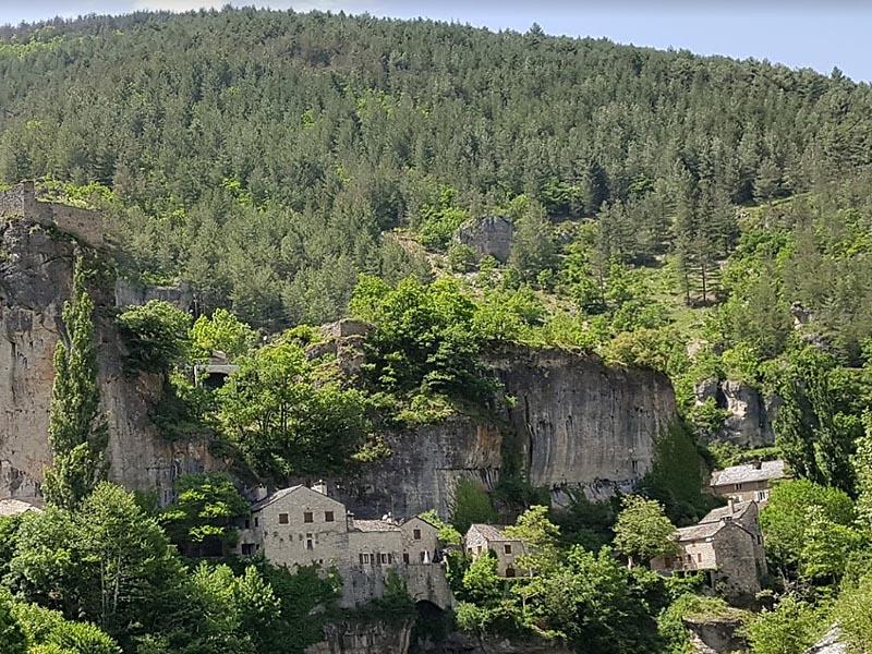 Область горной растительности в Севеннах