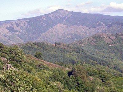 Гора Мон Эгуаль (Mont Aigoual)