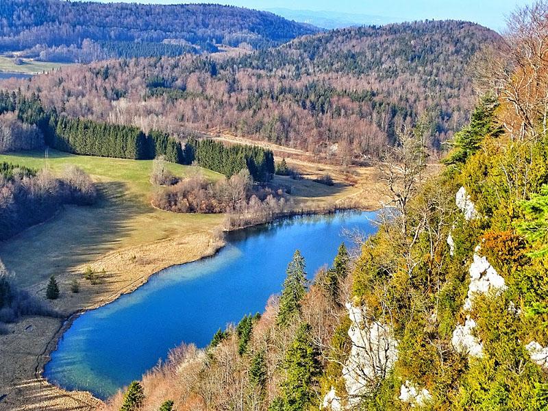 Лесные массивы в горах Юра