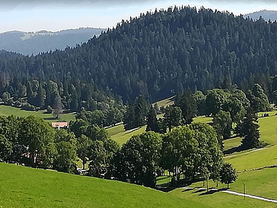 Гора Гран Соммартель (Grand Sommartel): 1337 м