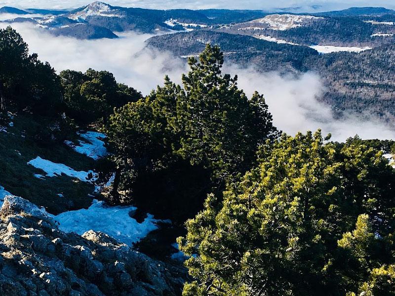 Горы Юра (Massif du Jura)