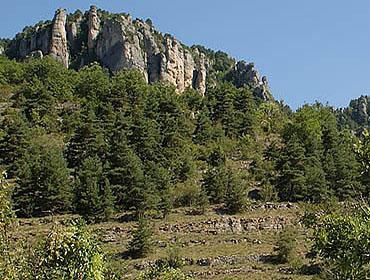 Региональный природный парк Гран Кос (Parc naturel regional des Grands Causses)