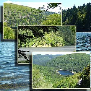 Фотографии  озера Альтенвее  (Эльзас, Франция)