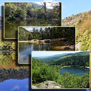Фотографии   озер Большое и Малое Нёвее  (Эльзас, Франция)