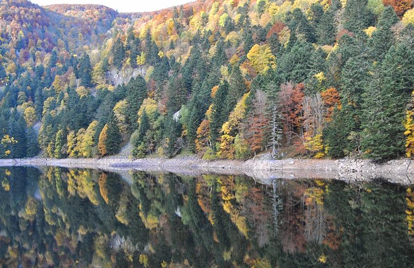 Озеро Альтенвее   (Эльзас)