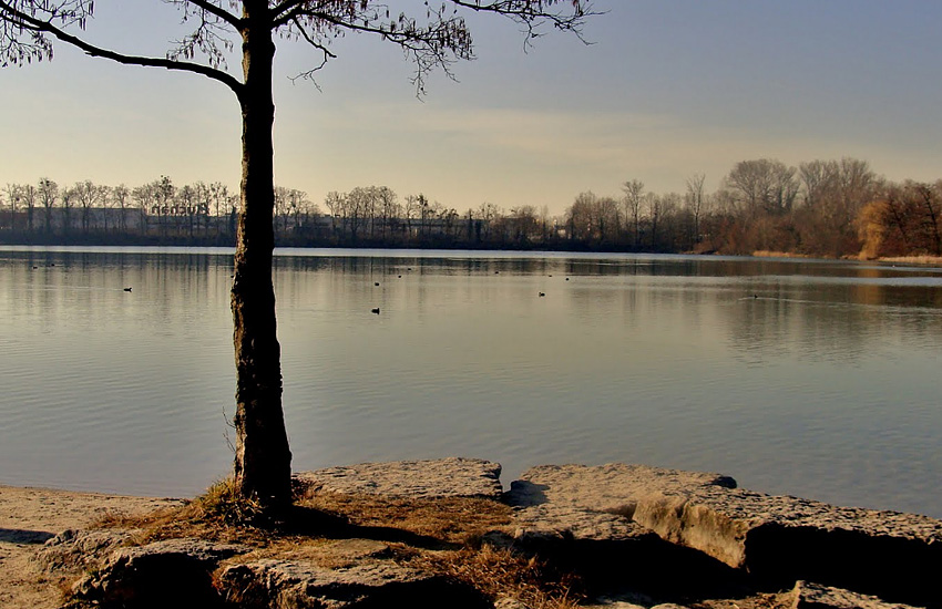 Озеро Багжерсе (Эльзас)