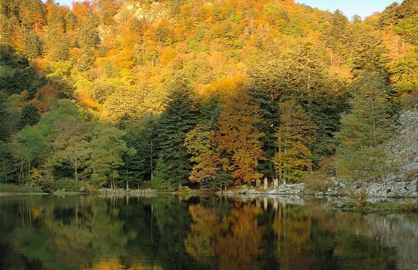 Озеро Фишбёдль  (Эльзас)