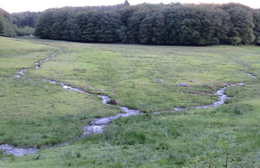 �сток реки Йонна (Yonne)