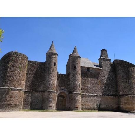Замок Оне-ле-Шато (Château d'Onet-le-Château)
