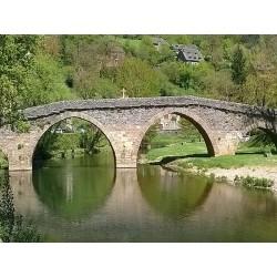Мост Вьё Пон Белькастель (Vieux Pont de Belcastel)