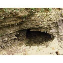 Национальный заповедник пещера Гравел (Réserve naturelle nationale de la grotte de Gravelle)