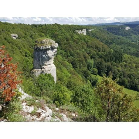 Национальный заповедник ущелье Валбуа (Reserve naturelle nationale du ravin de Valbois)