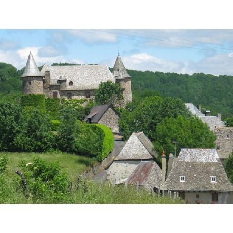 Замок Альбенак  (Château d'Albinhac)