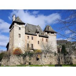 Замок Антрег (Château d'Entraygues)