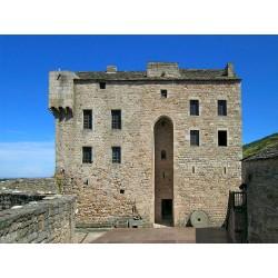 Замок Монтегю  (Château de Montaigut)