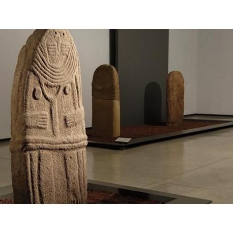 Музей Фенэй (Musée Fenaille): Родез, Авейрон